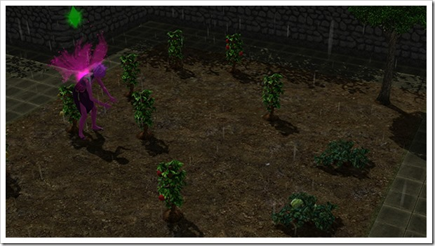 Gardening in the town