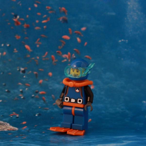SeriesX_Diver